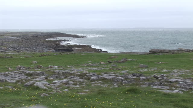 ms, rocky coastline, clare county, ireland - stationary process plate stock videos & royalty-free footage