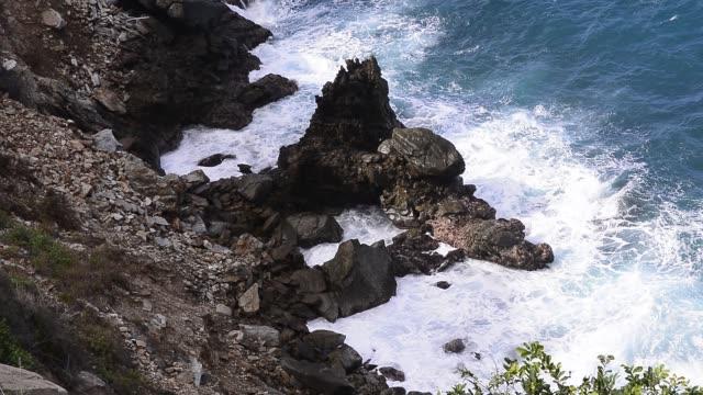 vídeos de stock, filmes e b-roll de rocky coastline. - arbusto tropical