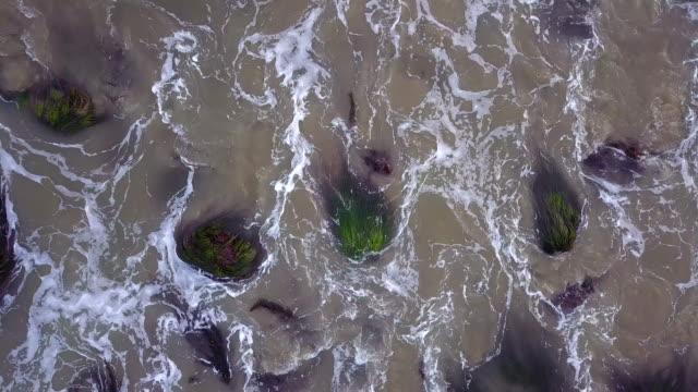 felsigen malibu beach-tracking drohne video - gezeitentümpel stock-videos und b-roll-filmmaterial
