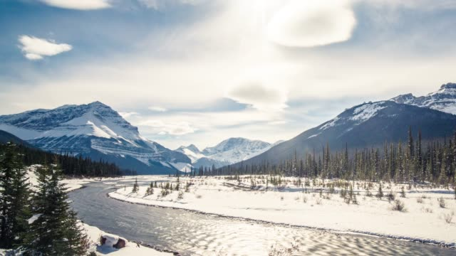 stockvideo's en b-roll-footage met rocky mountain viewside icefields parkway - sneeuwkap