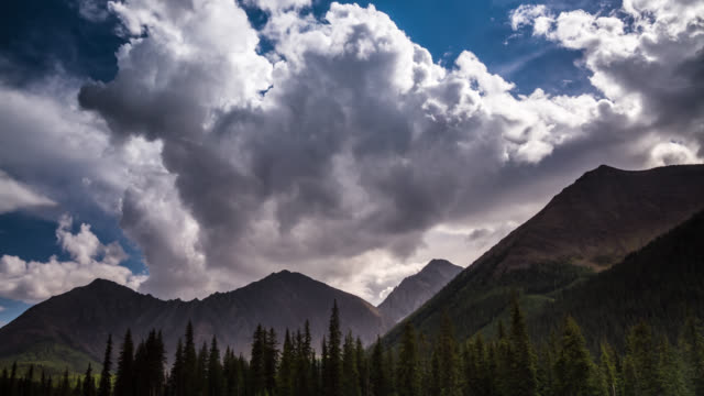 TL Rocky mountains and forest