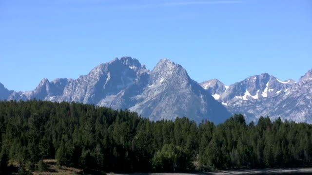 rocky mountains del wyoming - alberato video stock e b–roll