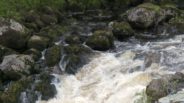rocky river in the galloway forest park, scotland - johnfscott stock videos & royalty-free footage