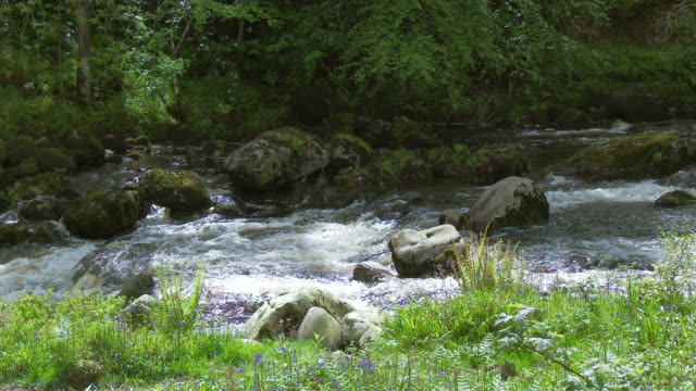 Rocky river in Galloway Forest Park, Schottland