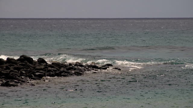 rocky shore on coast of kauai island - butte rocky outcrop stock videos & royalty-free footage