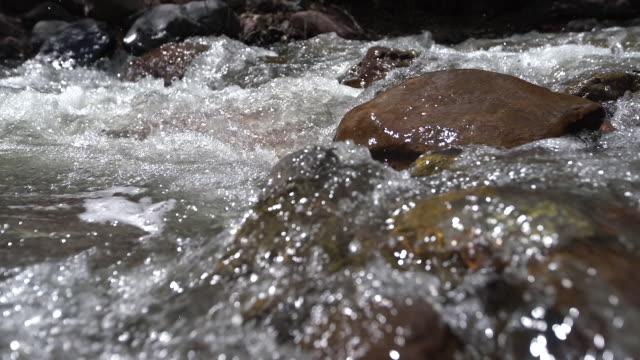 vidéos et rushes de rocky stream - torrent
