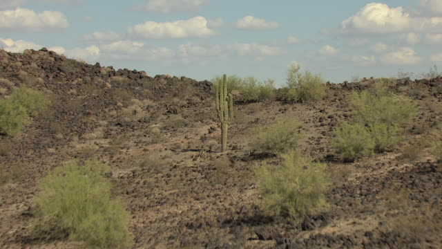 ws aerial rocky terrain with cacti to reveal palo verde nuclear generating station in valley / tonopah, arizona, united states  - kernenergie stock-videos und b-roll-filmmaterial
