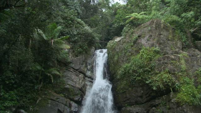 WS Rocky waterfall with lush plants surrounding/ Rio Grande, Puerto Rico