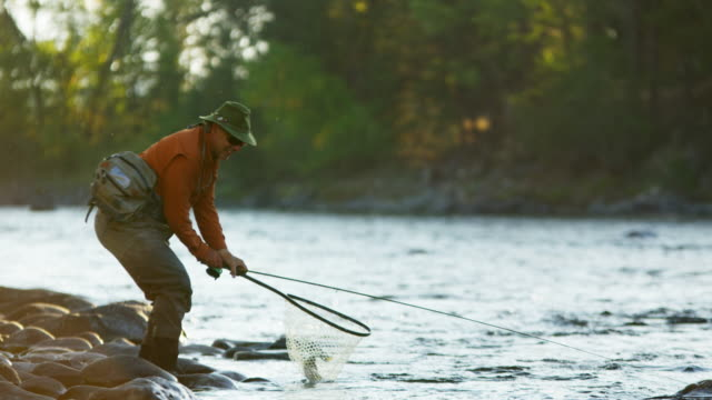 rod and reel fisherman casting in river usa - fishing reel stock videos and b-roll footage