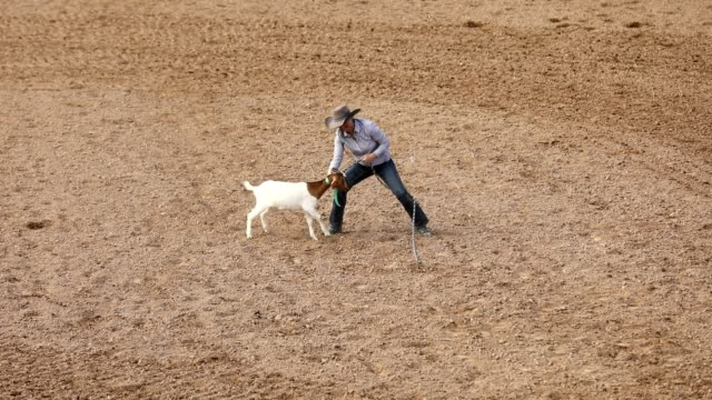 Rodeo Goat Roping