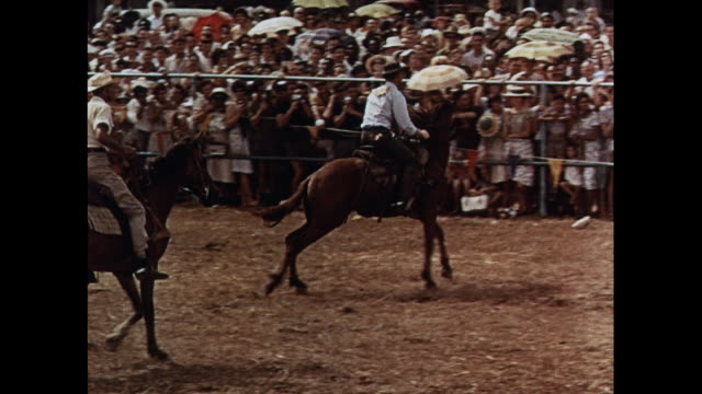 MONTAGE Rodeo show featuring horses and cowboys in Australia