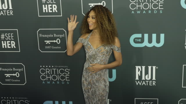 rodriguez at the 25th annual critics' choice awards at barker hangar on january 12 2020 in santa monica california - gif stock videos and b-roll footage