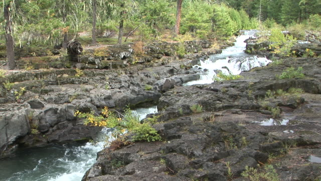ws, rogue river gorge, oregon, usa - stationary process plate stock videos & royalty-free footage