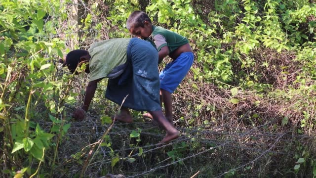 rohingya children through a barbed wire border fence at gumdum area at cox's bazar bangladesh on august 28 2017 un refugee agency said more than 3000... - cox's bazar stock videos & royalty-free footage