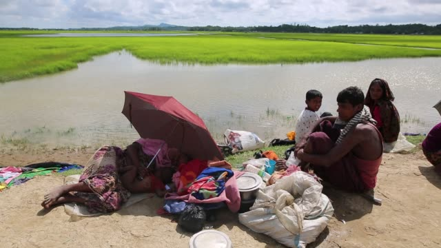 rohingya muslims fled from ongoing military operations in myanmar's rakhine state make their way through muddy water after crossing the... - rohingya culture stock videos and b-roll footage