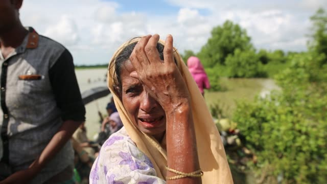 rohingya muslims fled from ongoing military operations in myanmar's rakhine state make their way through muddy water after crossing the... - rohingya kultur stock-videos und b-roll-filmmaterial