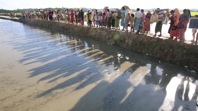 Rohingya Muslims fled from ongoing military operations in Myanmar's Rakhine state make their way through muddy water after crossing the...