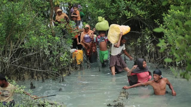 rohingya people fled from ongoing military operation in myanmar rakhain state entered bangladesh walks to go to refugee camp in tknaff in bangladesh... - rohingya kultur stock-videos und b-roll-filmmaterial