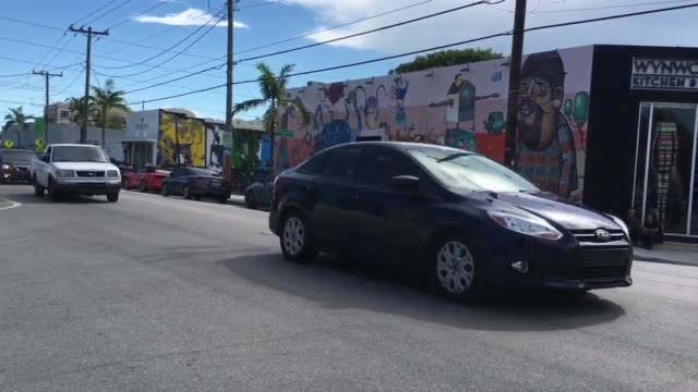 vídeos de stock, filmes e b-roll de b roll of wynwood miami which is now zika free zone - b roll