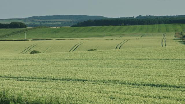 rolling farmland - north east england stock videos & royalty-free footage