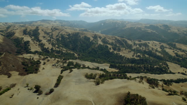 rolling hills in the sunol regional wilderness area, part of the east bay regional park district, in alameda county, california. - なだらかな起伏のある地形点の映像素材/bロール