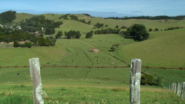 ha ws rolling landscape with barbed wire fence in foreground, oakura, new zealand - zaun stock-videos und b-roll-filmmaterial