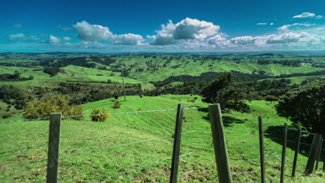 rolling new zealand farmland - time lapse - fence stock videos and b-roll footage