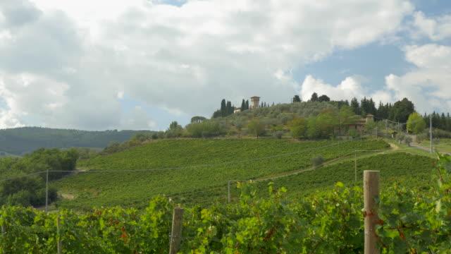 vídeos de stock, filmes e b-roll de rolling vineyards in provence, france - vino