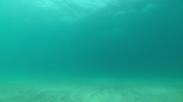 rolling waves cast shadows on sun dappled sand. - underwater stock videos & royalty-free footage