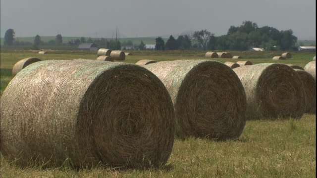 rolls of hay dry in a southern california farm field. - bale stock videos & royalty-free footage