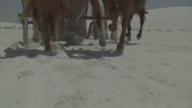 stockvideo's en b-roll-footage met roman soldiers racing across a white desert on chariots. - paardenkar