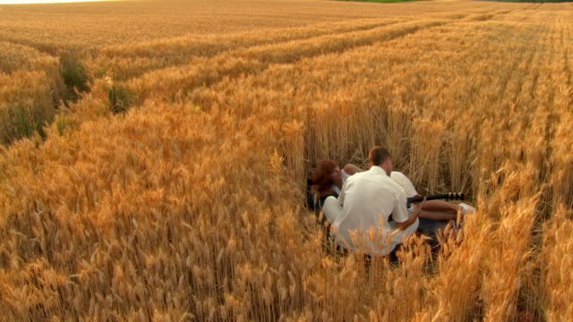 hd-kran: romantik in wheat field - liegen stock-videos und b-roll-filmmaterial