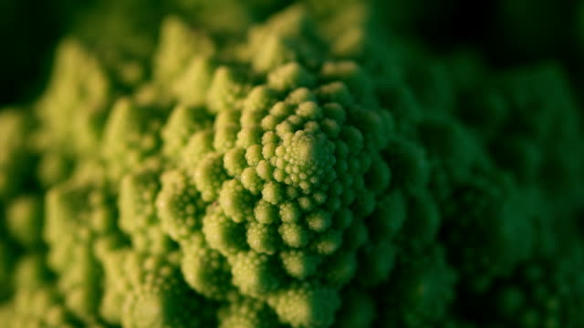 stockvideo's en b-roll-footage met romanesco - freshness