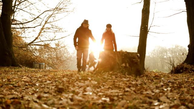 ロマンチックな秋 - 音声あり点の映像素材/bロール
