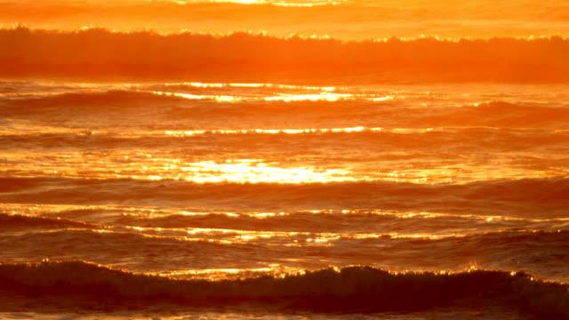 vídeos de stock, filmes e b-roll de pôr do sol romântico praia - pântano salgado