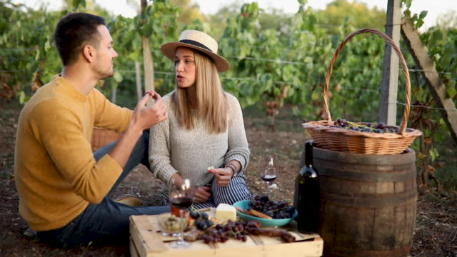 romantic brunch in vineyard - party hat video stock e b–roll