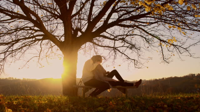 Romantic couple sitting under the tree at sunset