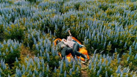 vídeos de stock e filmes b-roll de romantic date on a meadow. aerial view - islândia