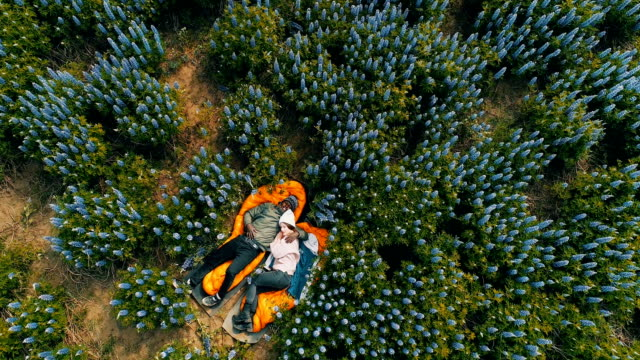 romantic date on a meadow. aerial view - reclining stock videos & royalty-free footage