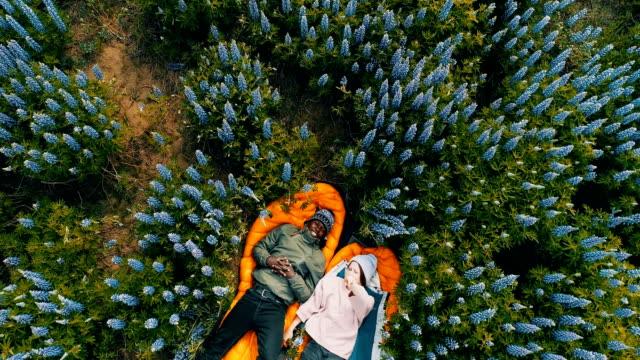 草原のロマンチックな日付。航空写真ビュー - 寝袋点の映像素材/bロール