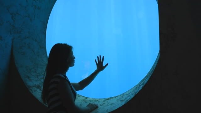 romantic girl admiring the underwater world of the aquarium - aquarium stock videos & royalty-free footage