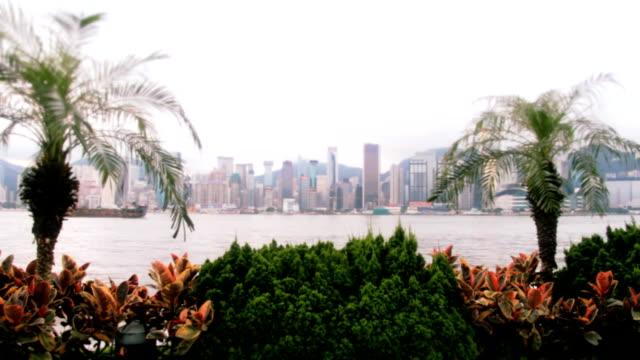 Romantic Hong Kong City View