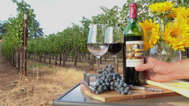 Romantic Picnic Wine Tasting. Pouring Wine in Glasses in a Vineyard Setting