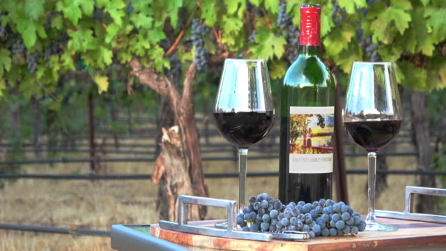 romantic picnic wine tasting. two glasses and a bottle in a vineyard setting - picnic table stock videos & royalty-free footage
