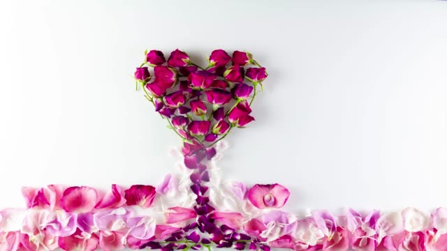romantic rose petal animation - bouquet video stock e b–roll