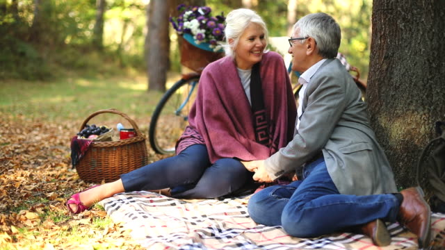 romantic senior couple seated on the grass and relaxing while picnic. - blanket stock videos & royalty-free footage