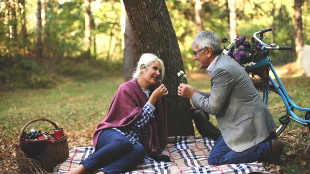 装着されている芝生の上でピクニックしながらリラックスしたロマンチックな年配のカップル。 - ギフトバスケット点の映像素材/bロール