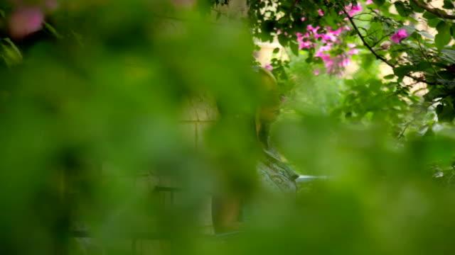 Romantische Frau auf flowered Balkon