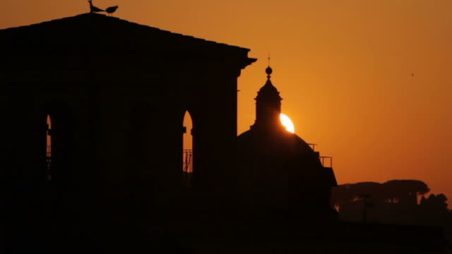 rome from capitol hill at sunset - medium group of animals stock videos & royalty-free footage