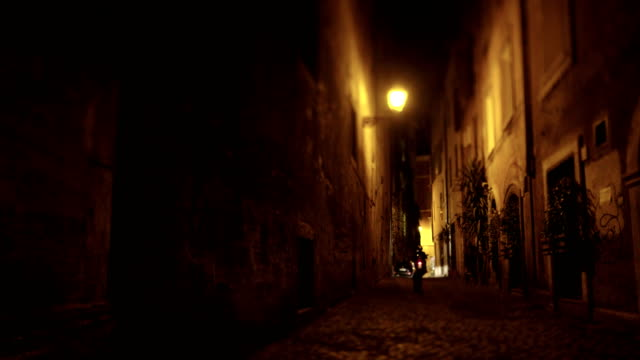 rome old center alley night - stray animal stock videos & royalty-free footage
